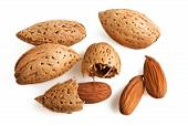 Eat more almonds to lose weight